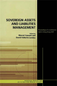 Sovereign Assets and Liabilities Management