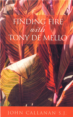 Finding Fire with Tony de Mello