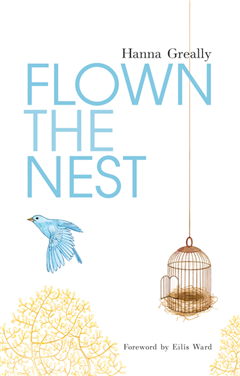 Flown the Nest:Escape From an Irish Psychiatric Hospital