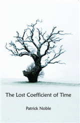 The Lost Coefficient of Time