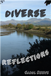 Diverse Reflections