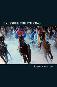 Bressbee the Ice King
