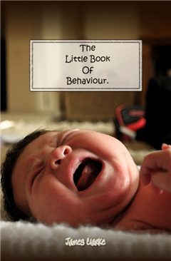 The Little Book of Behaviour