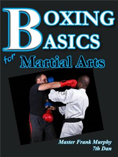 BOXING BASICS for Martial Arts